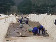 Construcción de un puente mixto en Domiñena